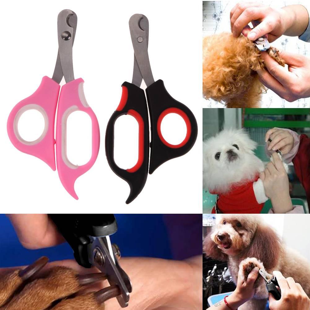 Какие щипцы для стрижки и подрезания нужны для ухода за когтями кошки и какова их цена