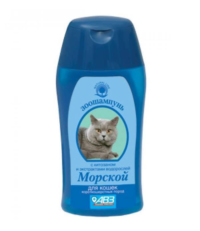 Как часто можно мыть собаку и щенка с шампунем