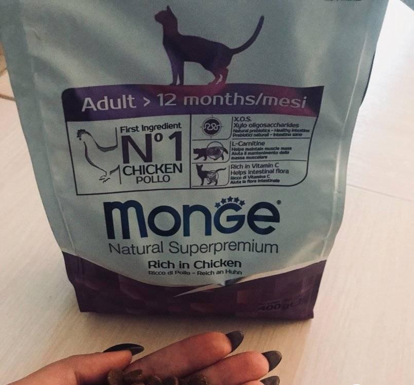 Корм монж (monge) для кошек: отзывы и обзор состава | сайт «мурло»