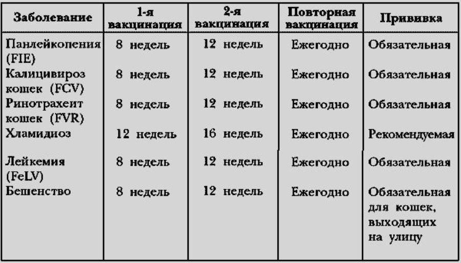 Кожные болезни кошек симптомы таблица