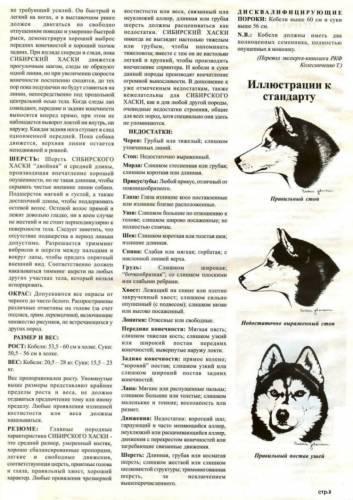 Воспитание и дрессировка хаски в домашних условиях: советы собаководов, нюансы, на что обращать внимание