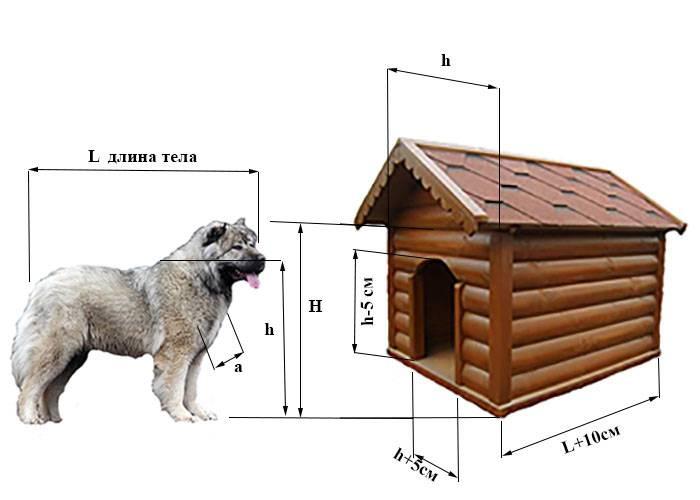 Будка для собаки своими руками: инструкции для изготовления из досок, поддонов и картона