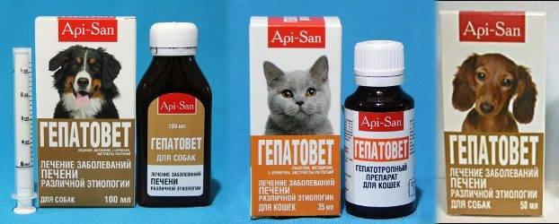 Гепатовет для кошек на страже здоровья печени