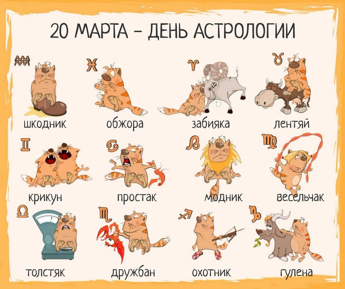 Какие домашние животные подходят разным знакам зодиака