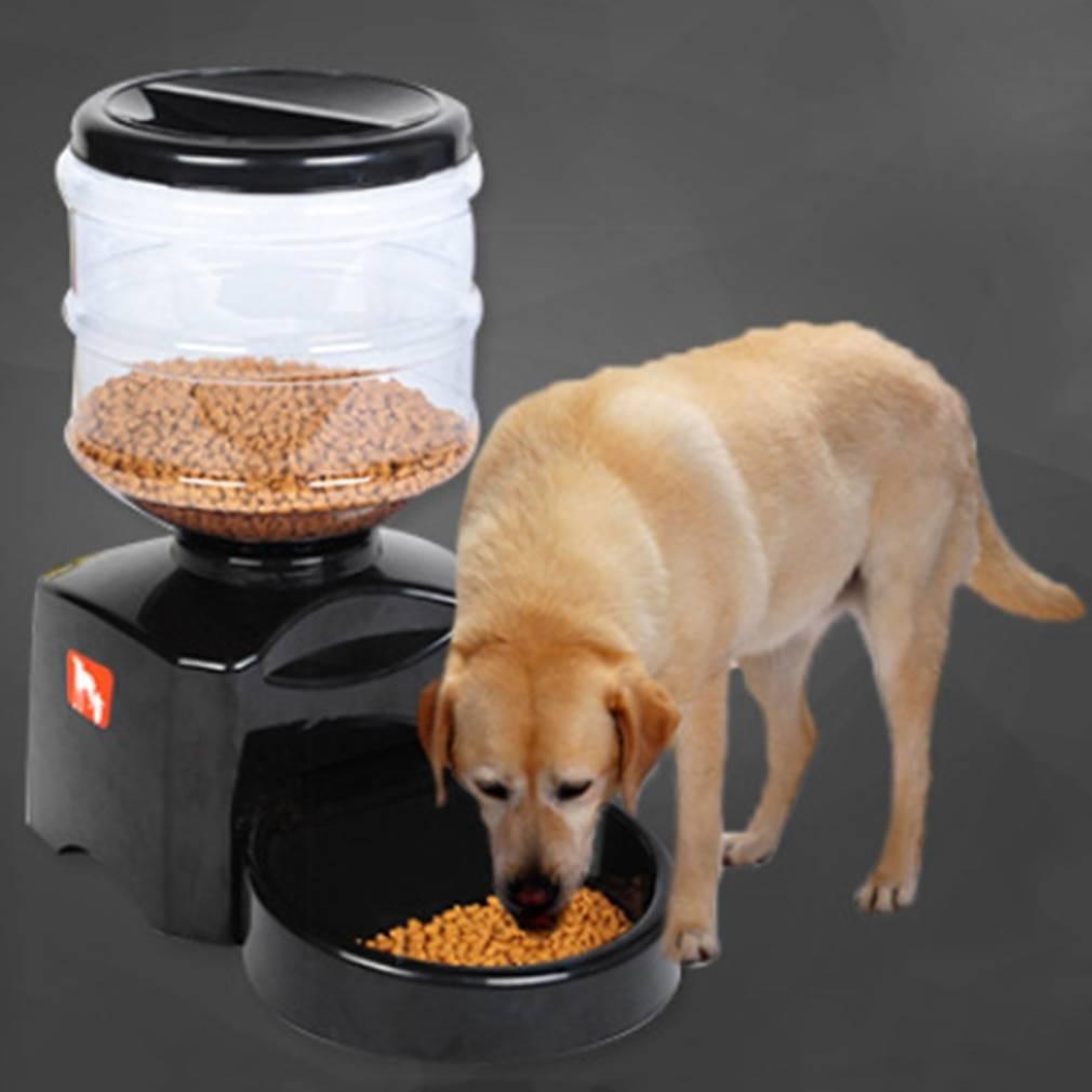Автокормушка для собак: автоматическая миска с таймером для собак крупных и мелких пород