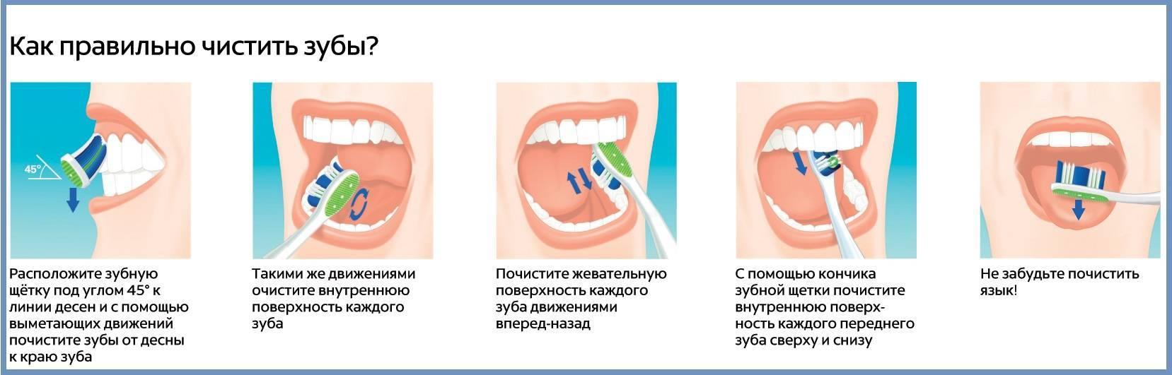 Электрические зубные щетки орал би: инструкция по применению, преимущества и особенности, тип управления, профессиональная забота в домашних условиях