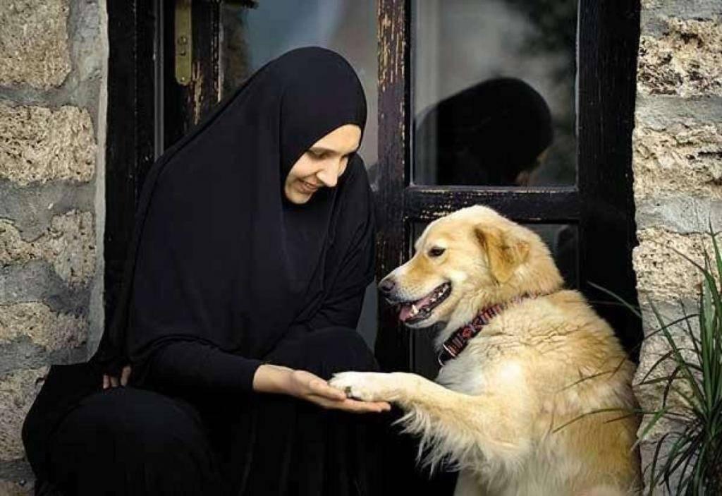 Почему мусульмане не любят собак и нельзя их трогать