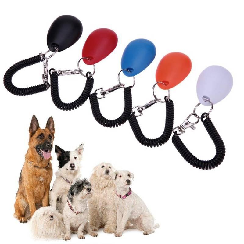 Кликер для собак: дрессировка с бесшумным свистком