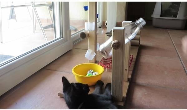 Автоматическая кормушка (автокормушка) для кошек