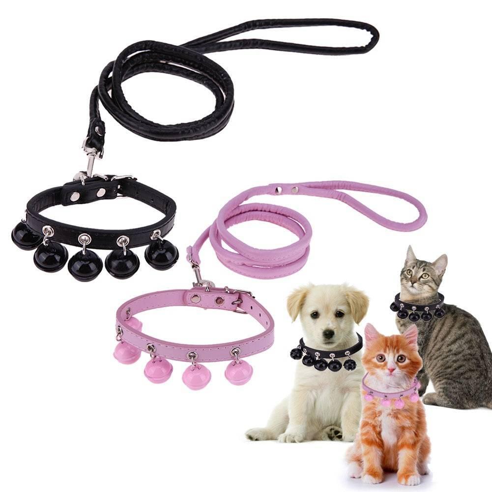 Поводок для кошек: ошейники для прогулок