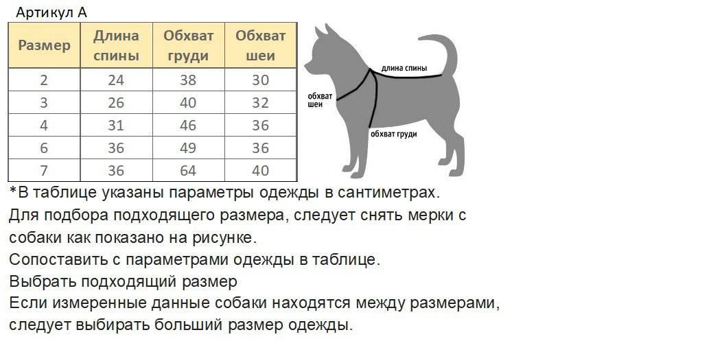 Как измерить длину куртки по спинке. как правильно делать замеры одежды