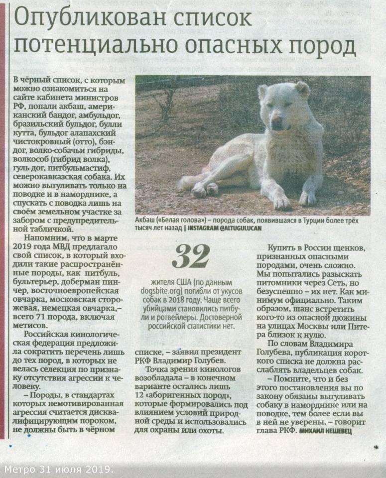 Список самых опасных пород собак