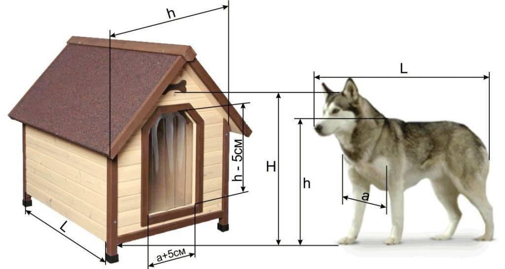 Будка для собаки своими руками: мастер-класс по постройке лучшего дома для питомцев (95 фото)