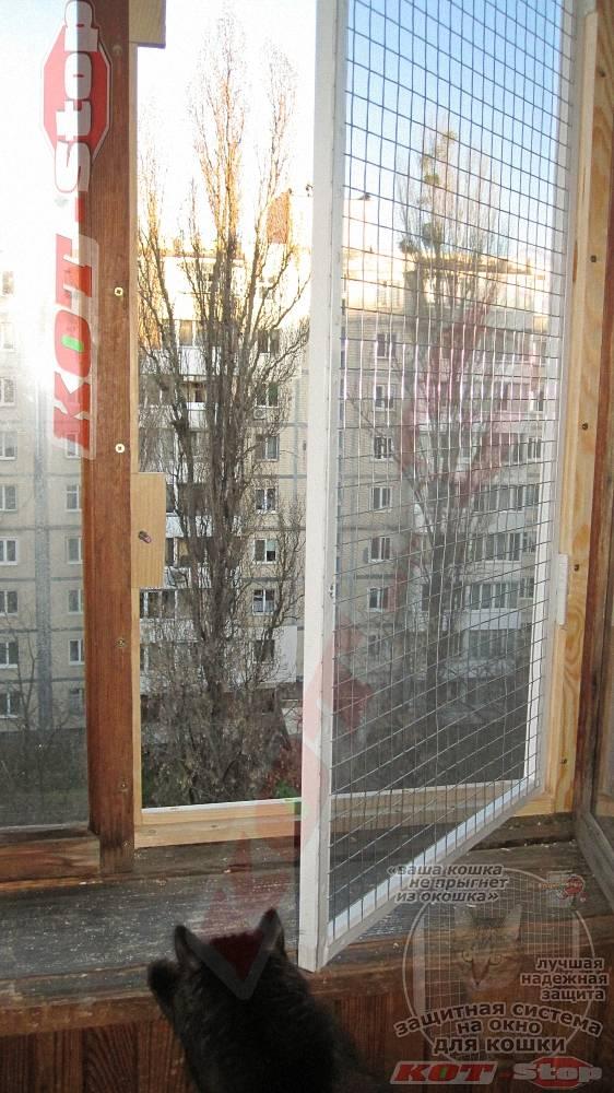 «антикошка»: сетка на окно для защиты домашних питомцев – советы по ремонту