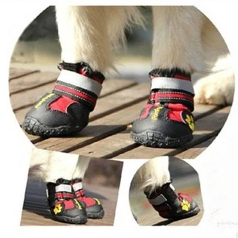Памперсы для собак мелких, средних и крупных пород