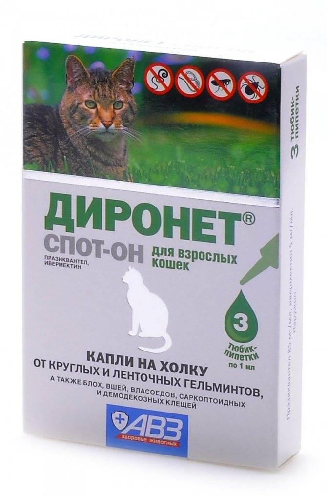 Линейка препаратов для кошек фронтлайн