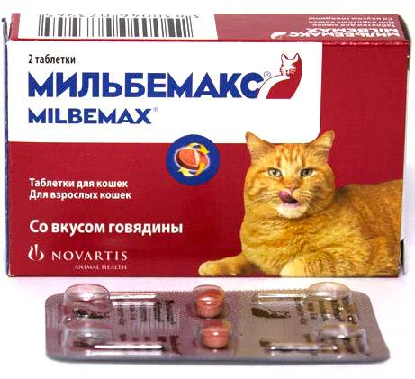 Мильбемакс для кошек: инструкция по применения, цена, отзывы
