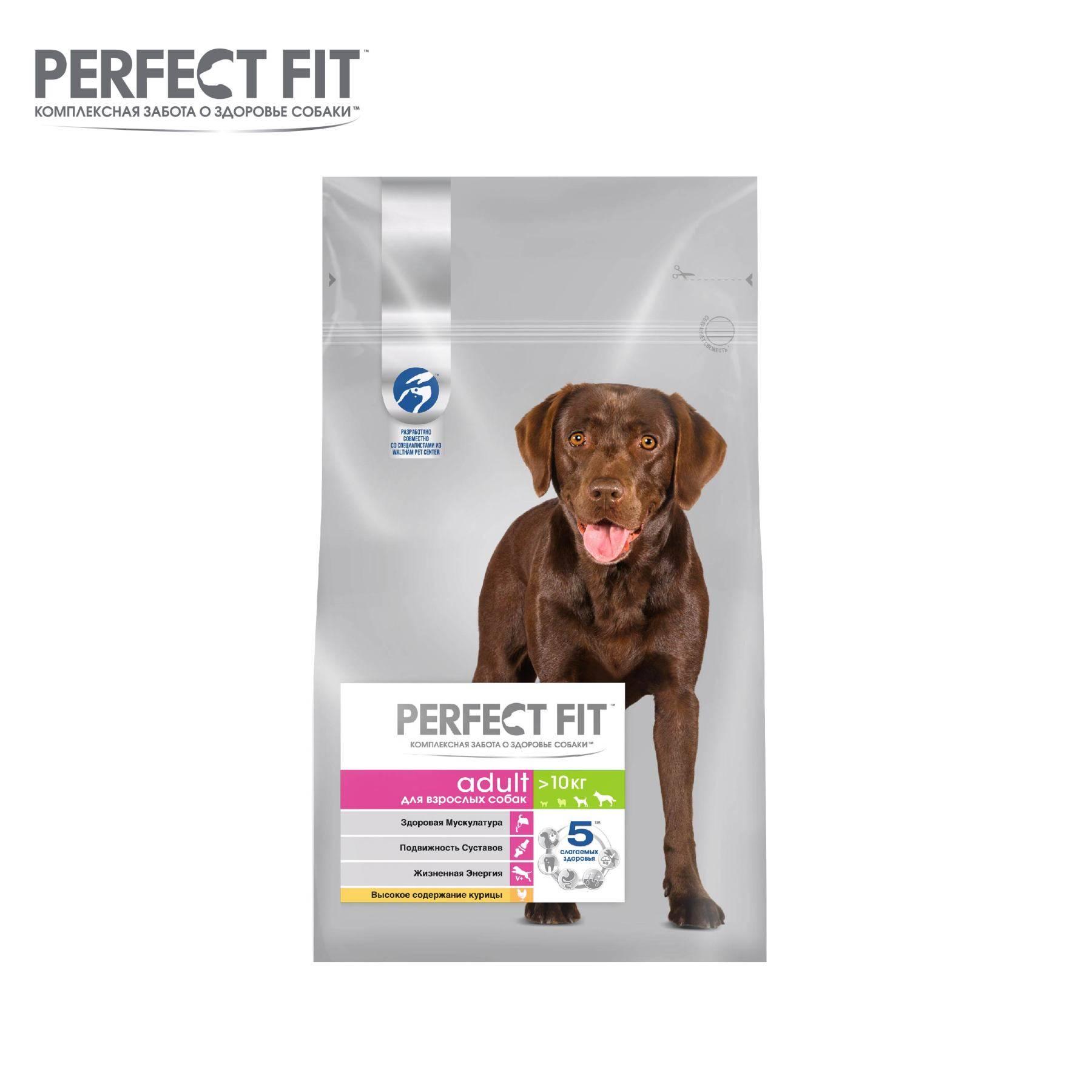Корма для собак perfect fit: ассортимент, анализ состава, плюсы и минусы, выводы