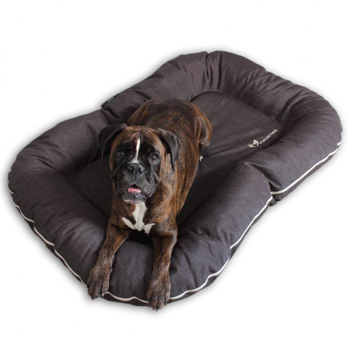 Какие бывают лежанки для собак: стандартные подстилки, оригинальные домики, пуфики