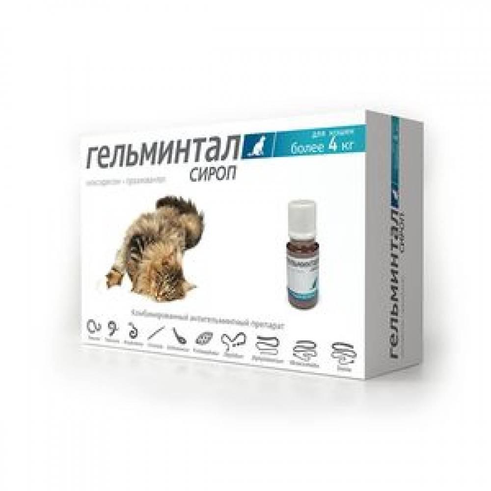 Глистогонное для кошек: антигельминтные препараты