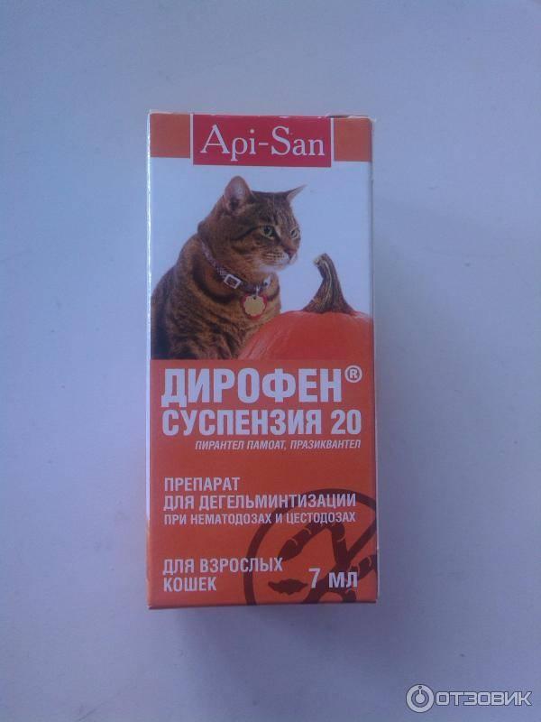 Дирофен инструкция по применению для кошек
