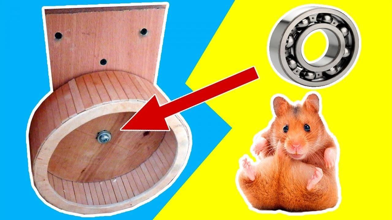 Беговые колеса для хомячков - люблю хомяков