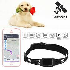 Gps-трекер для собак — как не нарушить закон