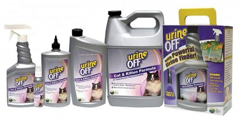 Как удалить запах кошачьей мочи – проверенные способы