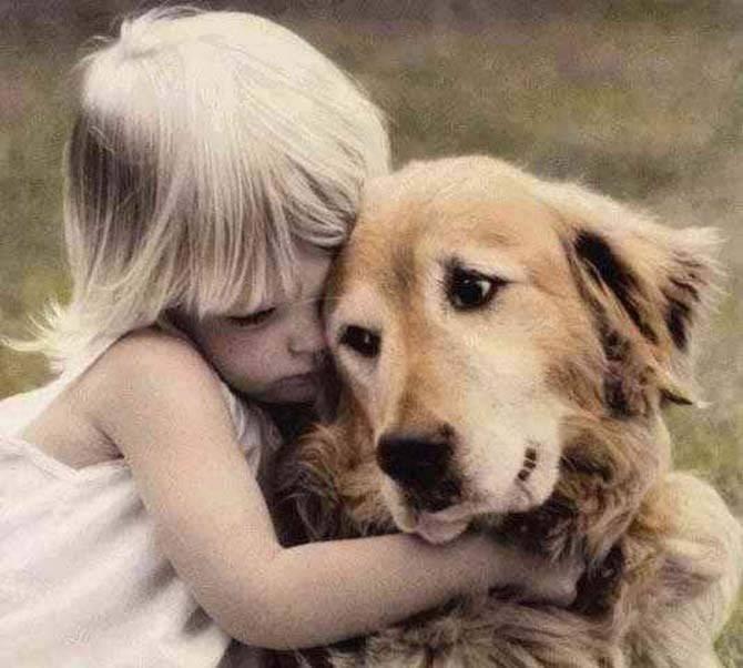 Самые верные и преданные породы собак в мире