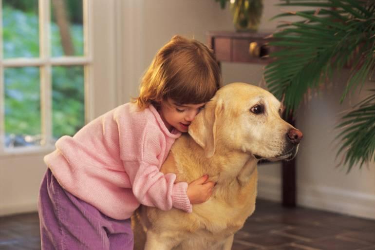 10 самых дружелюбных пород собак для семей с детьми!
