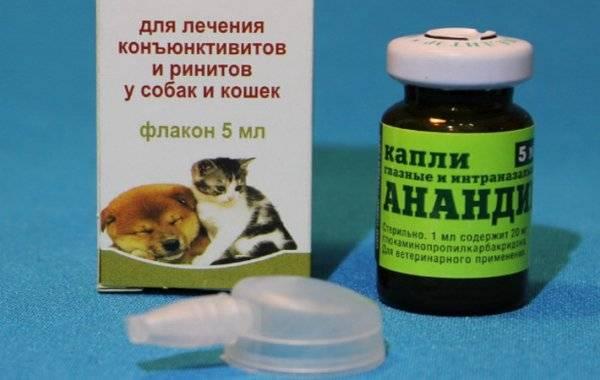 Анандин для кошек: инструкция по применению, капли, мазь, уколы