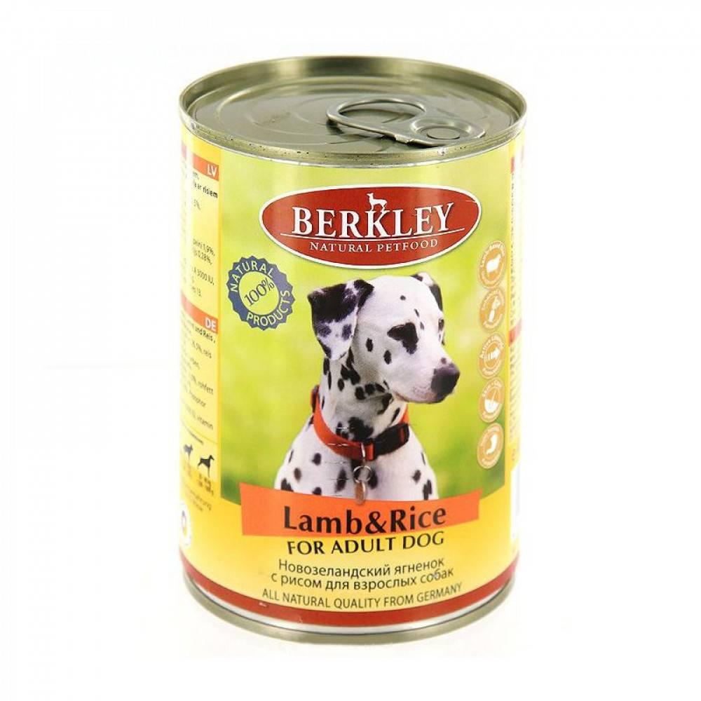 Корма для собак berkley или корма для собак prolife — какие лучше