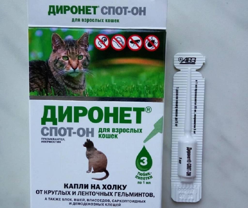 Диронет для кошек: спот-он, инструкция по применению