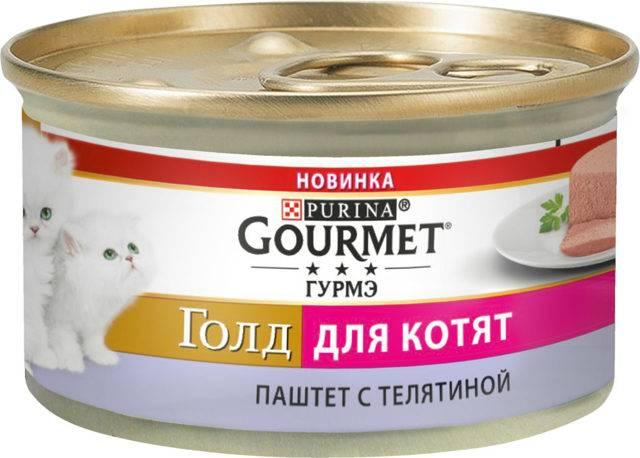 ᐉ обзор корма для кошек gourmet - ➡ motildazoo.ru
