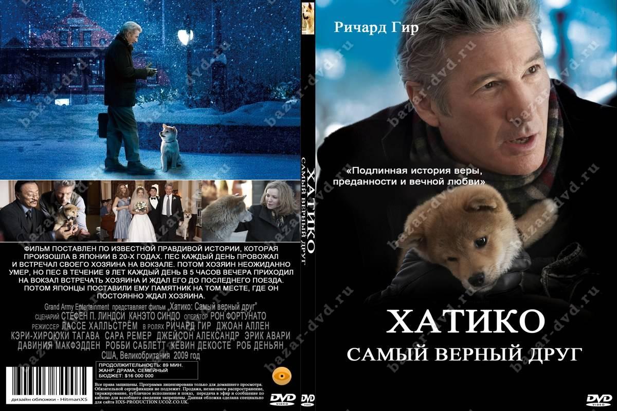 Название породы собаки из фильма хатико: история этого пса и описание вида