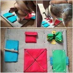 ᐉ 15 игрушек для собак своими руками: как сделать в домашних условиях - kcc-zoo.ru