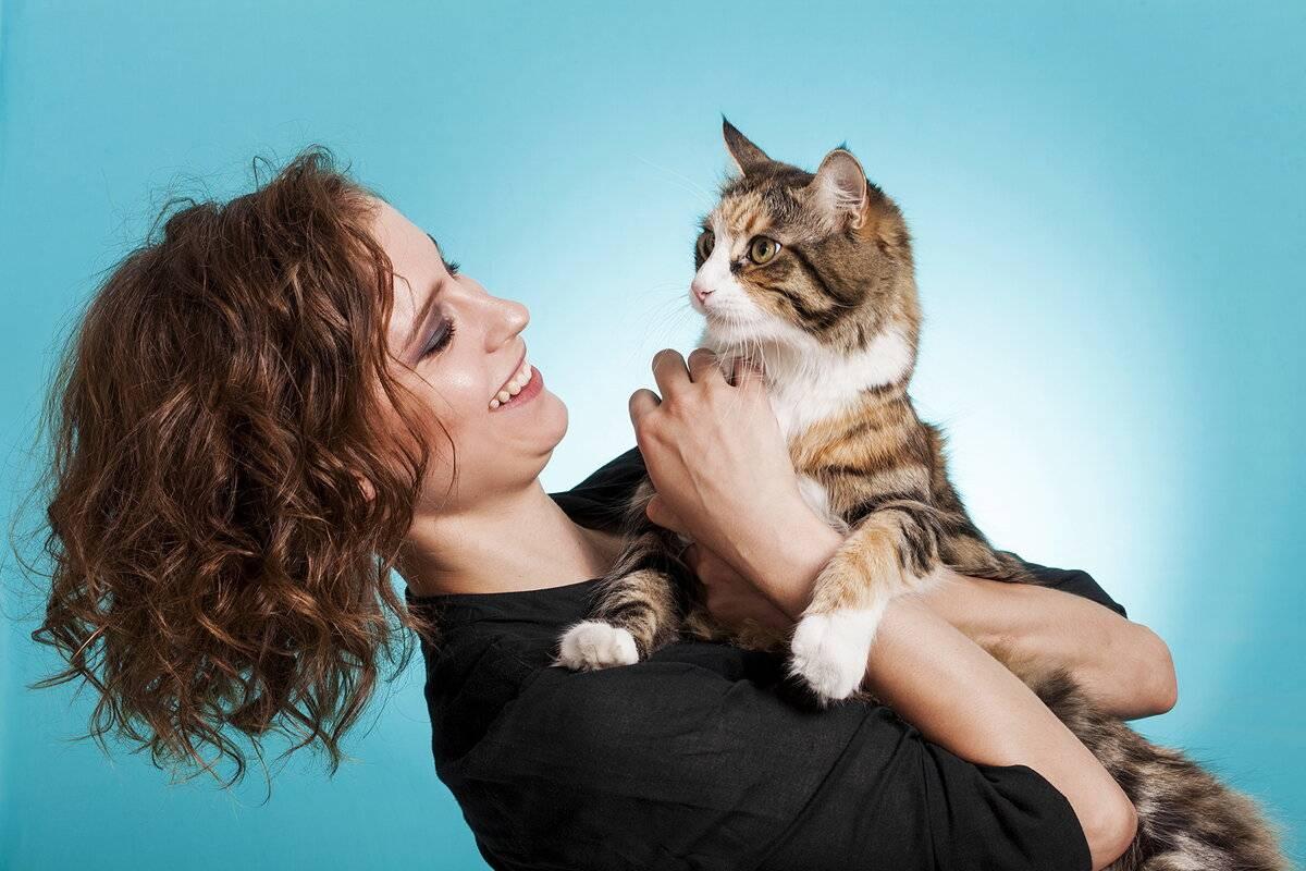 Как кошки благодарят хозяев: 7 способов кошачьего «спасибо»