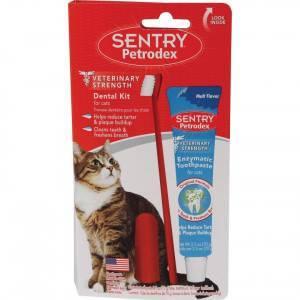Чистим зубы коту в домашних условиях: средства и секреты |