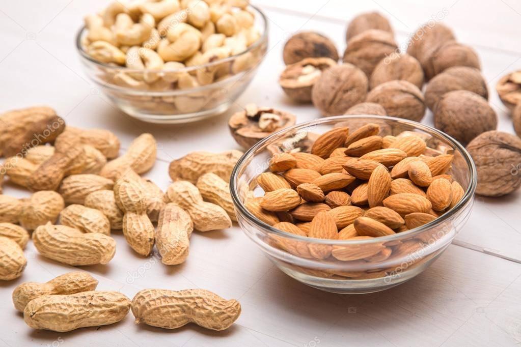 Орехи собакам: вред или польза. можно ли йоркширскому терьеру орехи - портал медика