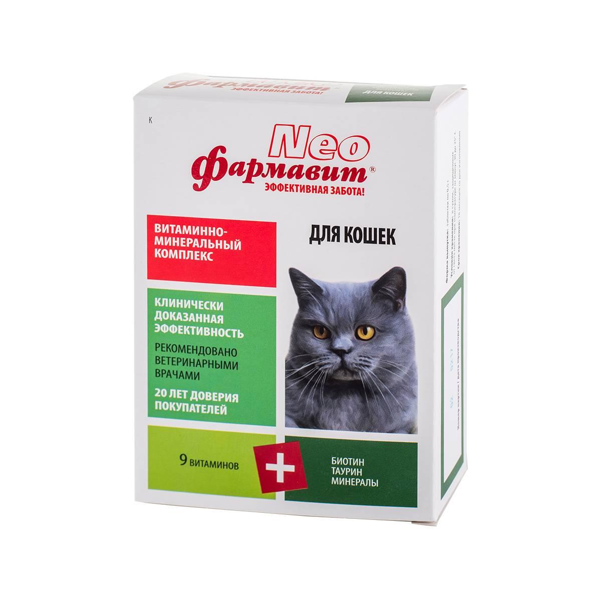 витамины для кошек: для иммунитета, для старых, стерилизованных, отзывы