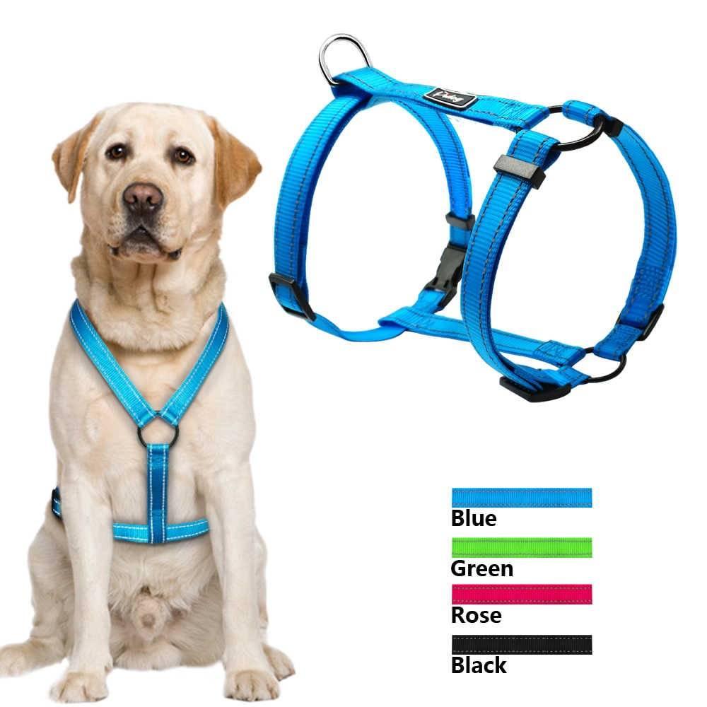 Готовые выкройки и порядок пошива шлейки для собак собственноручно