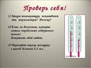 Как узнать у кота температуру без термометра, котенок с градусником