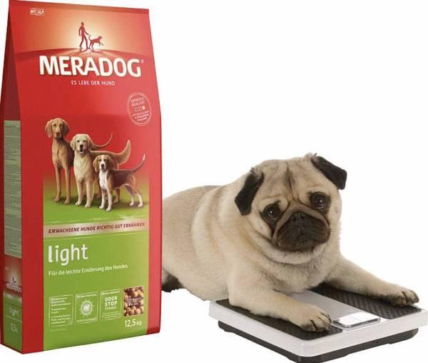 Обзор сухих кормов карми для собаки и щенка: описание компонентного состава