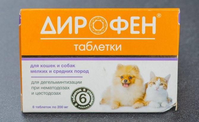 Таблетки каниквантел для собак: инструкция по применению