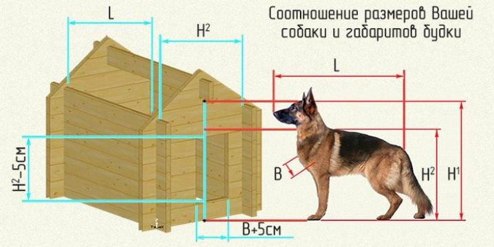 Инструкция по строительству будки для собаки