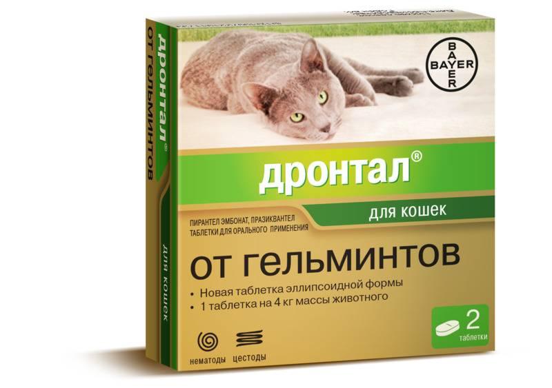 Суспензия от глистов для кошек и котят