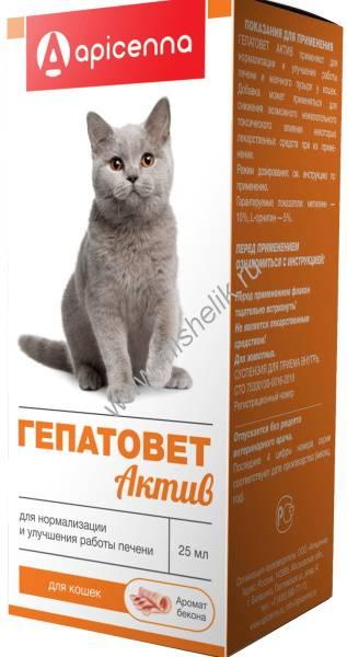 «гепатовет» для кошек: инструкция по применению