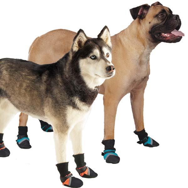 Шьем ботинки (обувь) для собак: пошаговая инструкция