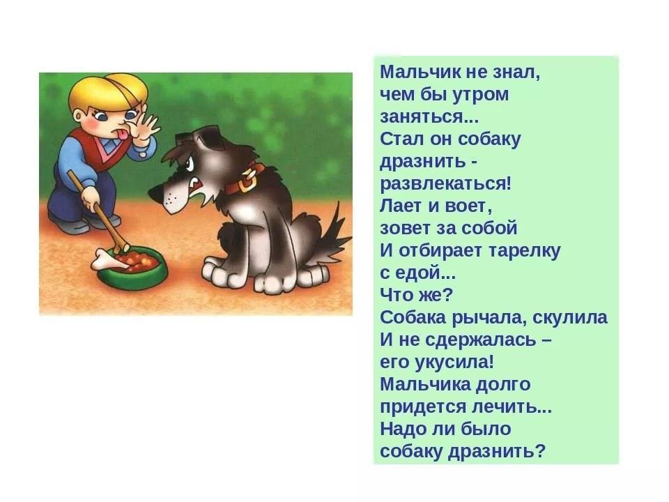 Почему татарам нельзя держать собак дома