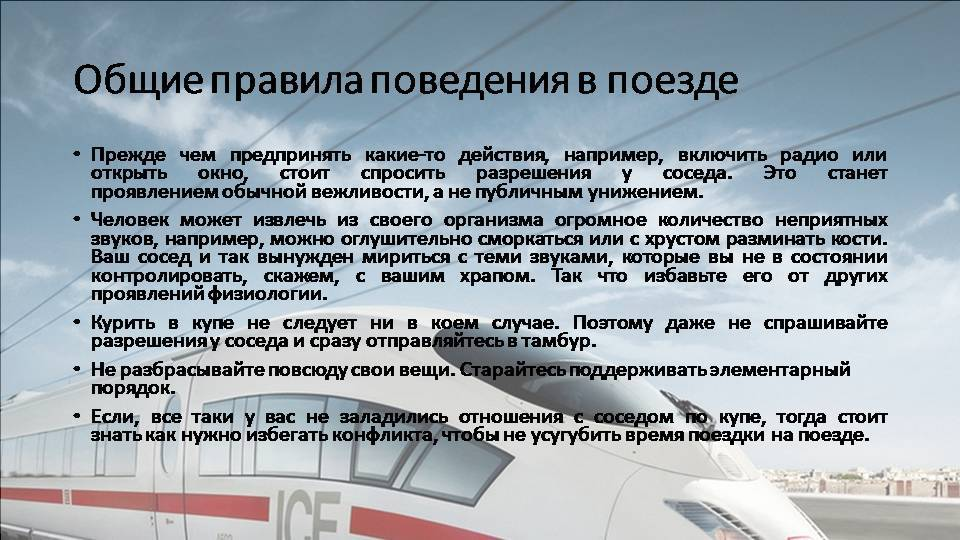 Перевозка кошек в поездах дальнего следования по россии (ржд)